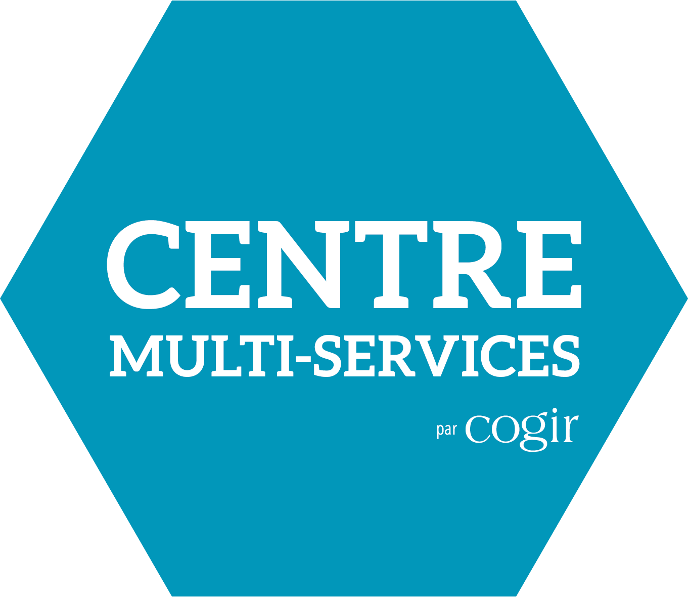 Multi-services center Cogir